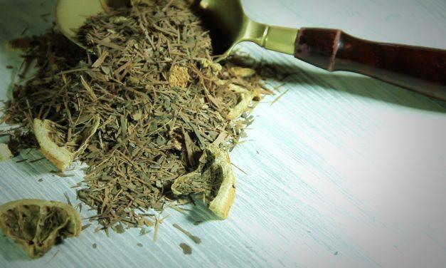 Lapacho, una infusión para el tratamiento renal y los calambres musculares
