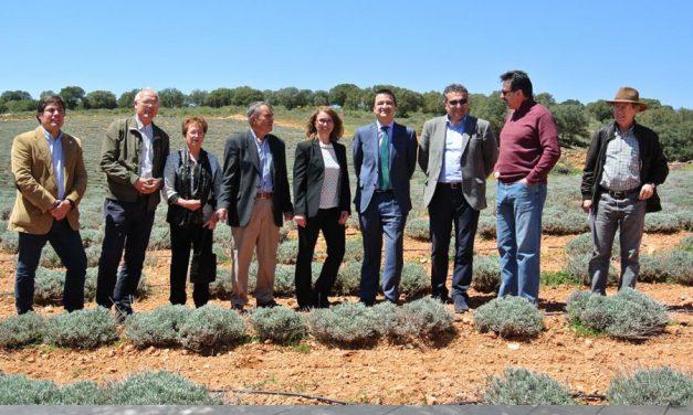 El Gobierno de Castilla-La Mancha publicará el próximo lunes la convocatoria a la mejor industria ecológica en los Premios Gran Selección