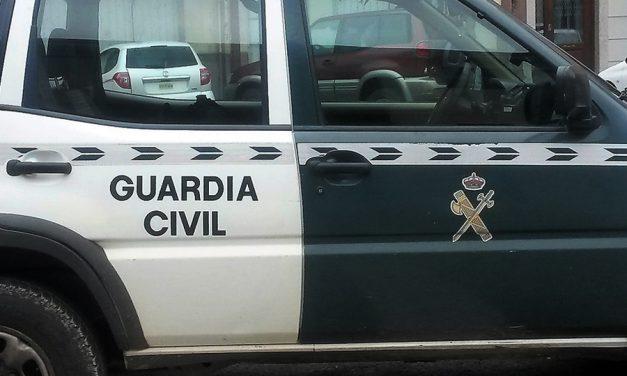 La Guardia Civil detiene a una vecina de Villarrubia de los Ojos por maltrato animal