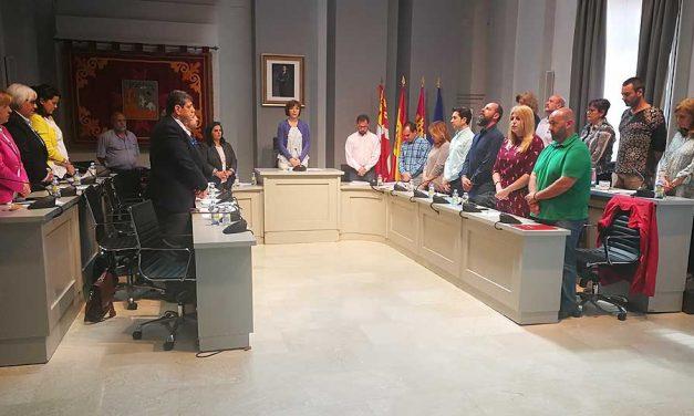 El pleno aprueba la creación de un Jardín de Viñedos en Alcázar para apoyar la cultura del vino