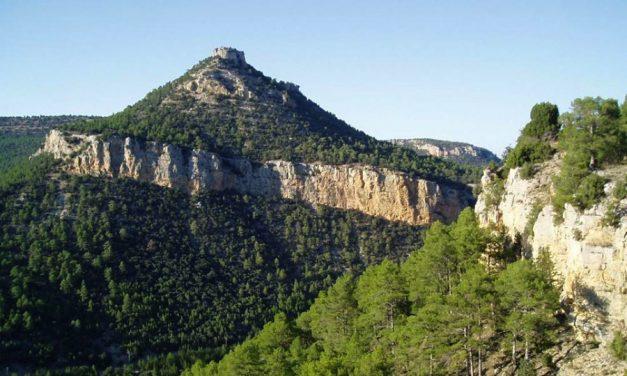 Castilla-La Mancha se une a la celebración del Día del Medio Ambiente con la entrega de los premios regionales y actividades en los parques naturales