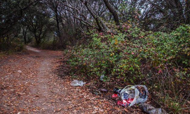 El Gobierno regional impulsa la concienciación contra el abandono de residuos en los parajes naturales a través del proyecto 'LIBERA'