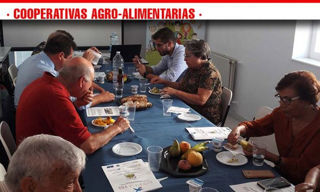 """""""Alimenta tu Vida"""" culmina llegando a más de 400 mayores de toda Castilla-La Mancha"""