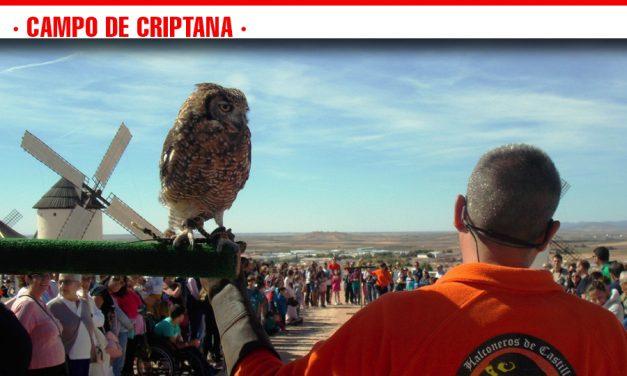 Multitudinaria participación de público en una nueva edición de 'La Aventura de las Aves'