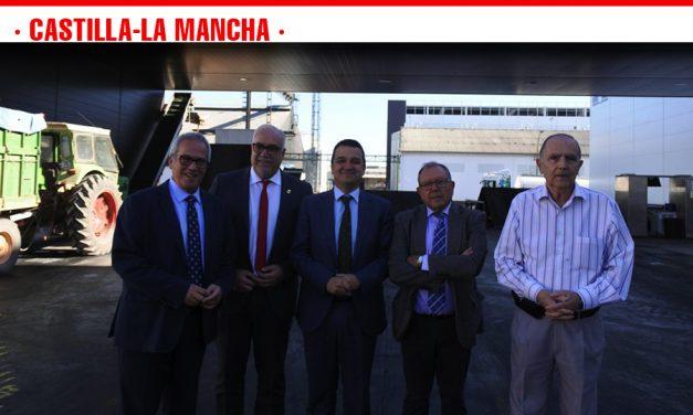 Castilla-La Mancha, líder en viñedo ecológico, con una superficie que supera las 55.500 hectáreas y una producción de dos millones de hectolitros