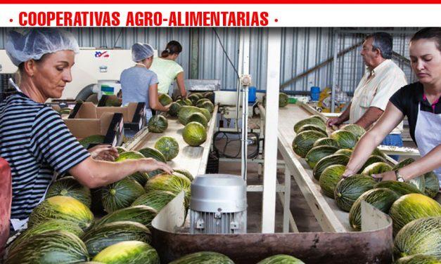 Finaliza en Castilla-La Mancha la campaña de melón y sandía con claro balance negativo