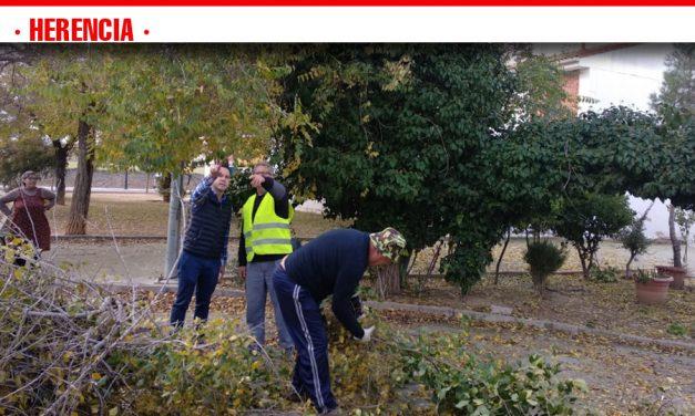 El Ayuntamiento de Herencia comienza la campaña de Poda para garantizar la conservación de los árboles