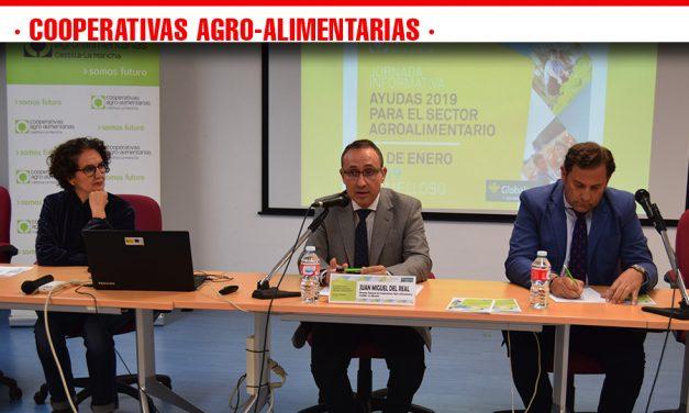 Cooperativas Agro-alimentarias ha expuesto en una jornada celebrada en Tomelloso las distintas convocatorias de subvenciones abiertas para este 2019