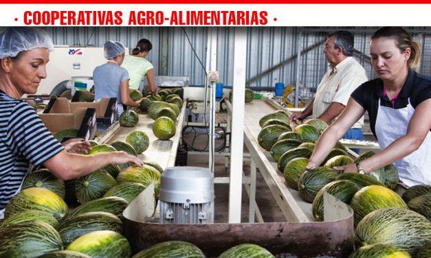 El sector cooperativo de melón y sandía en Castilla-La Mancha fija sus retos para 2019