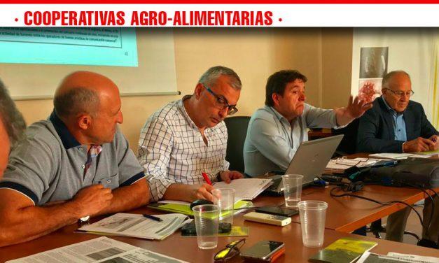 Cooperativas Agro-alimentarias Castilla-La Mancha propondrá una medida de regulación en el sector vitivinícola