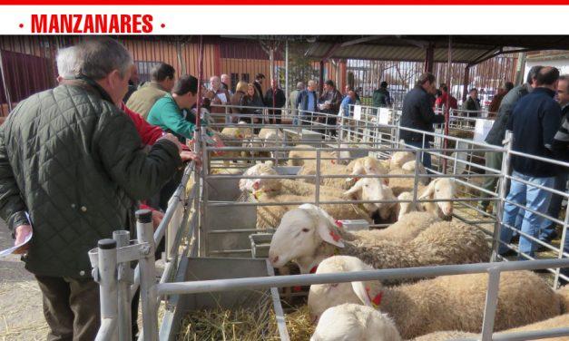 Agrama convoca su primera subasta del año en el recinto de Fercam