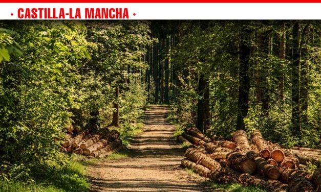 Un total de 3.000 efectivos, 64 autobombas, 25 medios aéreos y 87 brigadas lucharán a partir del 1 de junio en la campaña de incendios forestales de Castilla-La Mancha