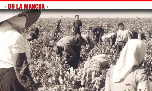 """El Consejo Regulador DO La Mancha publica las bases de sendos Concursos de fotografía Antigua e Instagram """"Vinos de La Mancha"""""""