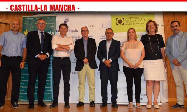 Cooperativas Agro-alimentarias prevé una cosecha de 21 millones de hectolitros de vino y mosto en Castilla-La Mancha