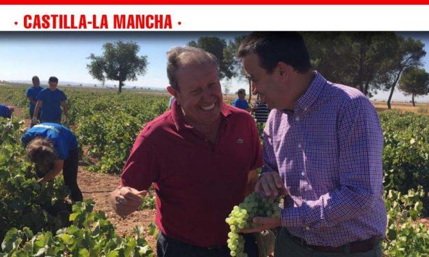 Martínez Arroyo prevé una vendimia de entre 20 y 23 millones de hectolitros en Castilla-La Mancha