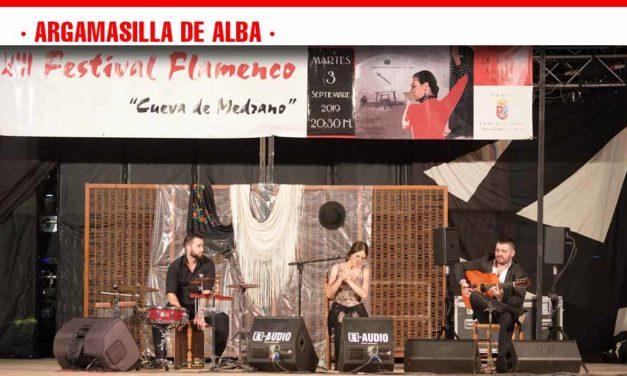 Gran noche para los amantes del flamenco en Argamasilla de Alba