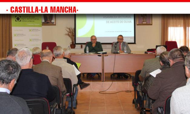 Cooperativas Agro-alimentarias estima una producción de aceite en Castilla-La Mancha de 85.000-90.000 toneladas