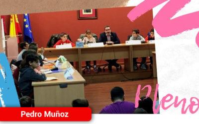 Pleno Infantil para conmemorar El Día de la Constitución Española