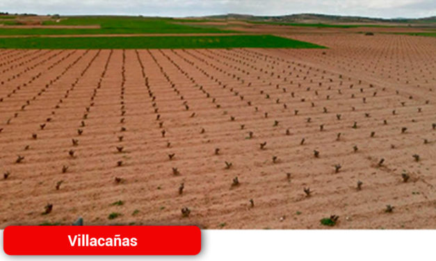Desde el miércoles, 17ª Semana del Campo en Villacañas