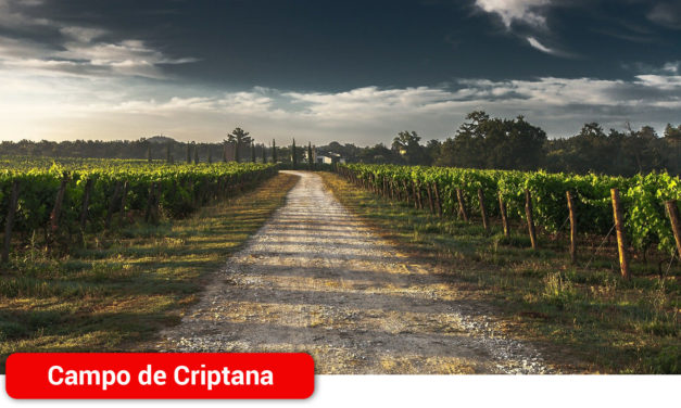 Campo de Criptana amplía el servicio de guardería rural para garantizar la seguridad del término municipal