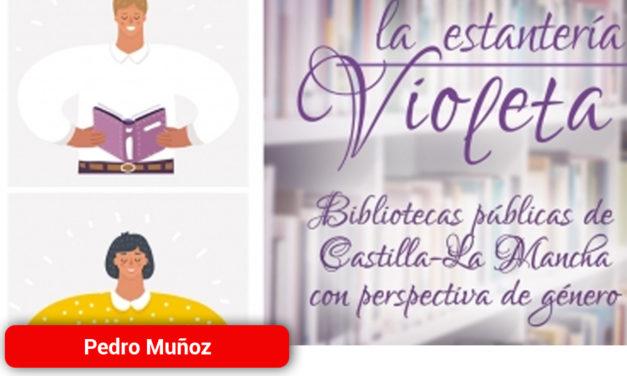 Estantería Violeta en la Biblioteca