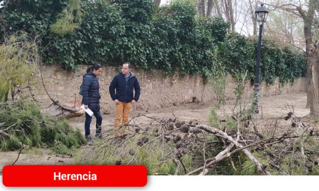 Nueva actuación de  renovación y acondicionamiento del Parque Municipal de Herencia