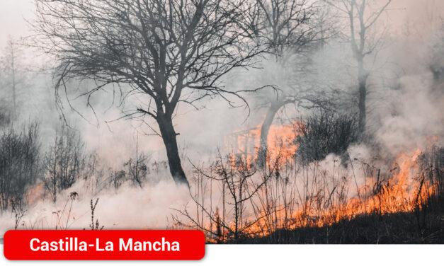 El Gobierno regional pide a la ciudadanía responsabilidad y máxima prudencia en estos días de altas temperaturas para evitar incendios forestales