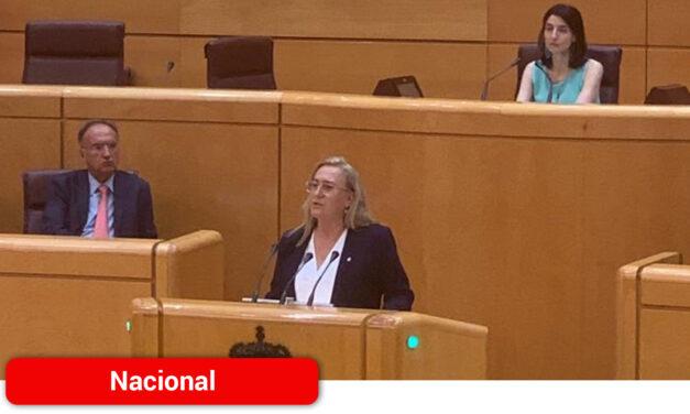 """Carmen Mínguez pide en el Senado trabajar en un """"Plan de Orientación, avance y enriquecimiento educativo´ de cara a próximos cursos"""
