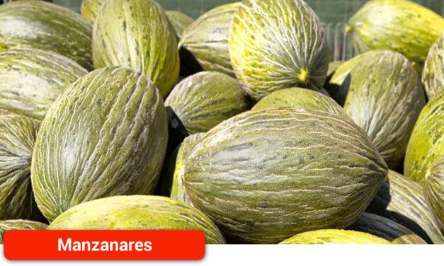 La campaña de melón y sandía de La Mancha arranca con pocas existencias