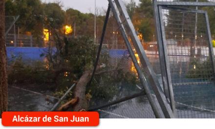 La tormenta caída provoca numerosos desperfectos especialmente en el arbolado