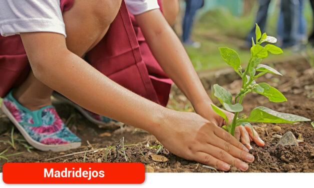 Plantación de 3.000 árboles en la Sierra de Valdehierro para poner freno a la desertificación