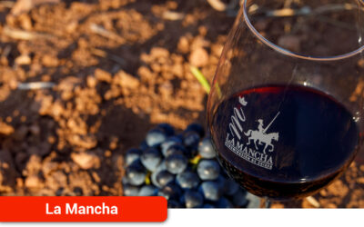 Muy buena añada para los vinos DO La Mancha