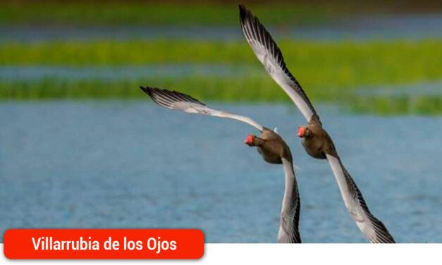El guipuzcoano Pablo Pérez Herrero ganador del IX Concurso Fotográfico del Día Mundial de los Humedales