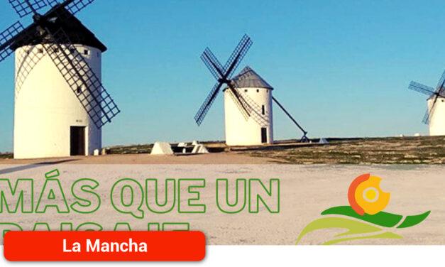"""Nace """"Más Que Un Paisaje», un proyecto promocionado por Mancha Norte para reivindicar y fortalecer la identidad comarcal"""
