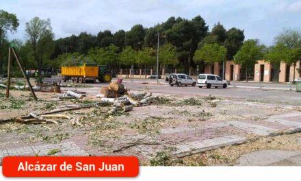 Equo Alcázar Vecinal pide que se reúna la Mesa del Árbol