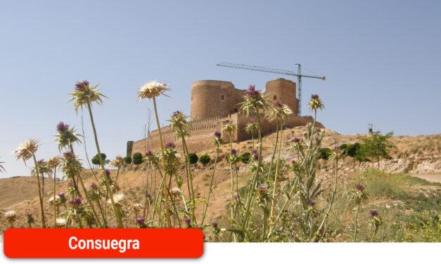 En marcha la licitación de las obras de conservación del Castillo de la ciudad