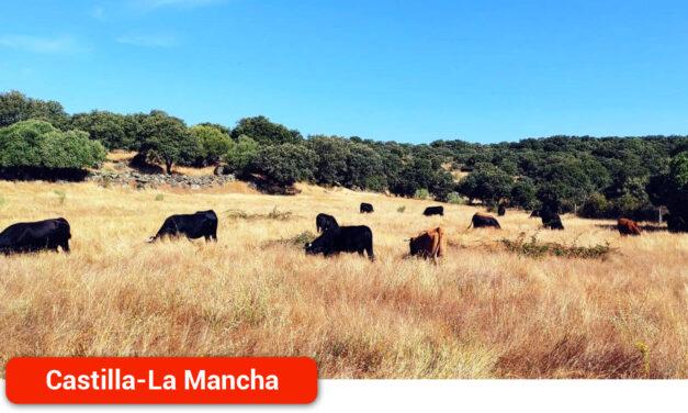 Impulso para la ganadería en extensivo, compromiso con el medioambiente y su entorno