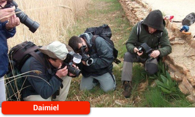 El testing fotográfico de biodiversidad en Las Tablas de Daimiel llega a su décima edición