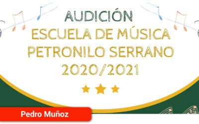 La Escuela Municipal de Música 'Petronilo Serrano' celebra el fin de curso con una audición