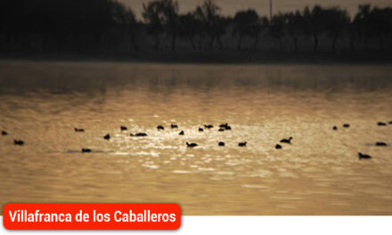 Lagunas Vivas y la eurodiputada Cristina Maestre apuestan por la defensa en su conjunto de La Mancha Húmeda