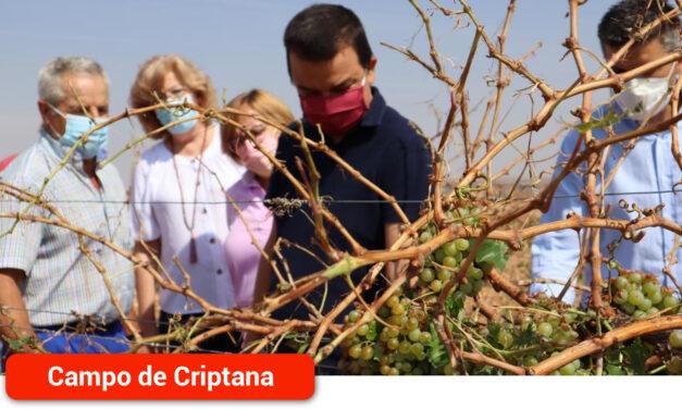 Castilla-La Mancha incrementará un 16 por ciento la financiación para los seguros agrarios en 2022, que alcanzarán los 6,5 millones de euros en total