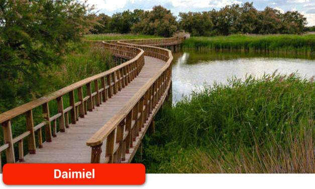 Acordado el bombeo de agua a las Tablas de Daimiel para recuperar el parque