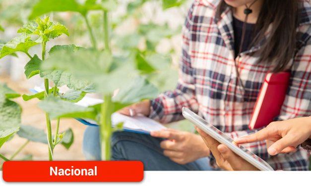 El Gobierno aprueba un Real Decreto para incentivar la igualdad de las mujeres en las explotaciones agrarias de titularidad compartida