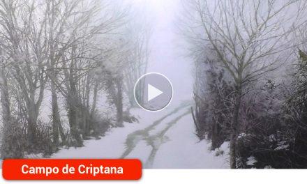 Guillermo Sedano gana la 38ª edición del Premio Nacional de Pintura 'Villa de los Molinos' con su paisaje nevado